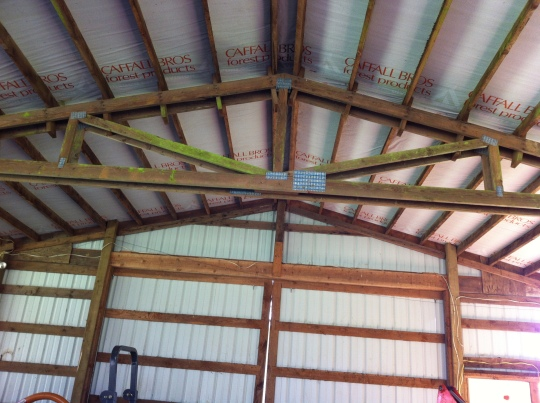 I know it's spring and not summer 'cause the Barn Swallows have not made their nests yet in the barn.