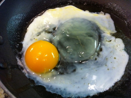 Eggs 2014