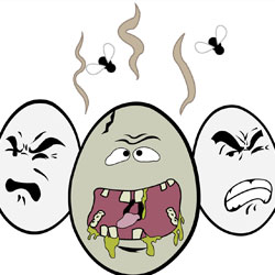 From  http://www.pure-watersolutions.com/makes-water-smell-like-rotten-eggs/