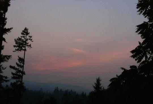 Smokey August 2014