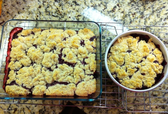 Blackberry Cobbler 2015